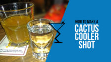 Cactus Cooler Shot