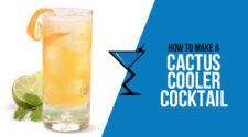 Cactus Cooler Cocktail