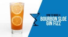 Bourbon Sloe Gin Fizz