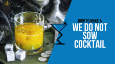 We do not Sow Cocktail